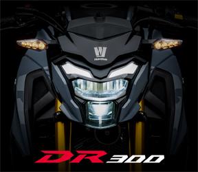 DR300